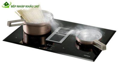 Bếp điện từ kết hợp hút mùi Hafele HC-IHH77A